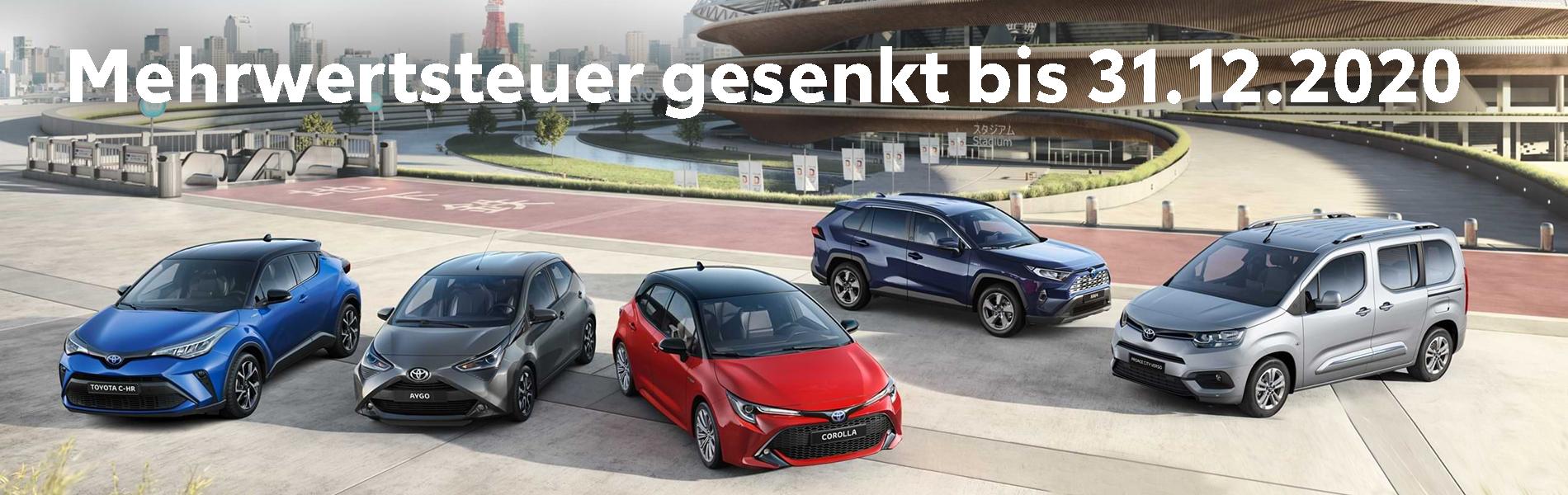 Team Deutschland Modelle